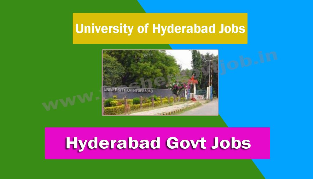 University of Hyderabad Jobs